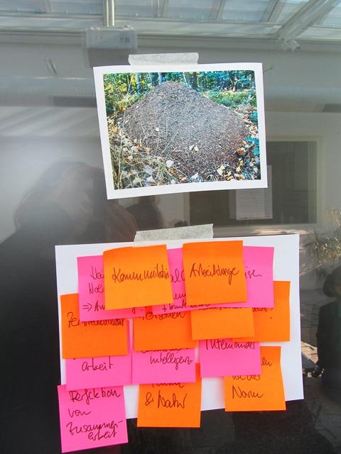Das Bild zeigt das Foto eines Ameisenhaufens und dazu auf Post Its Assoziationen wie Kommunikation, Arbeitswege, Perfektion von Zusammenarbeit