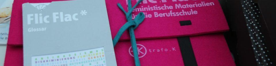 die Mappe flicflac feministische materialien für die berufsschule