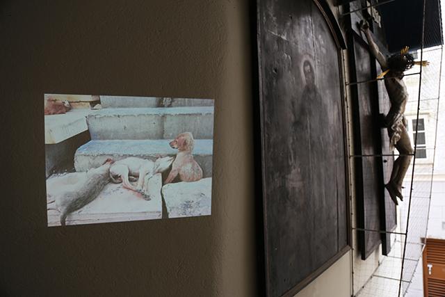 Intervention Projektion. Foto: Klaus Erich Dietl